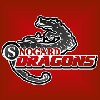 Snogard Dragons